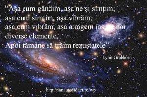 atractia - Lynn Grabhorn