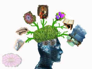 rasaduri pe creier