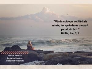_Mânia ucide pe cel fără de minte, iar aprinderea omoară pe cel rătăcit._Biblia, Iov, 5, 2